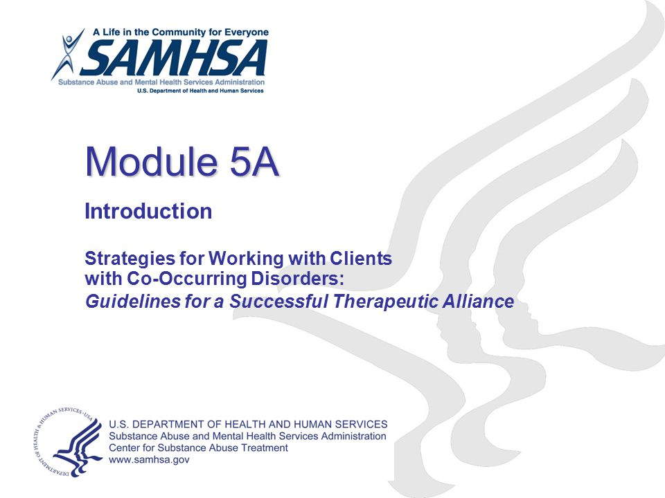 Module 5A Introduction Strategies for Working with Clients