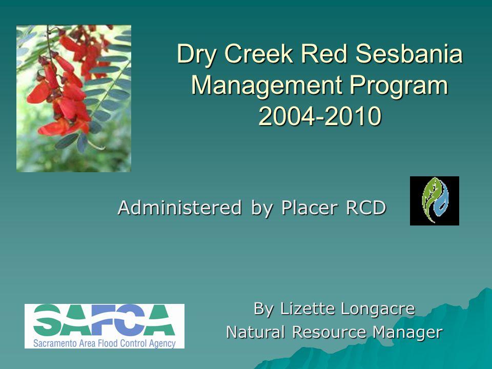 Dry Creek Red Sesbania Management Program 2004-2010