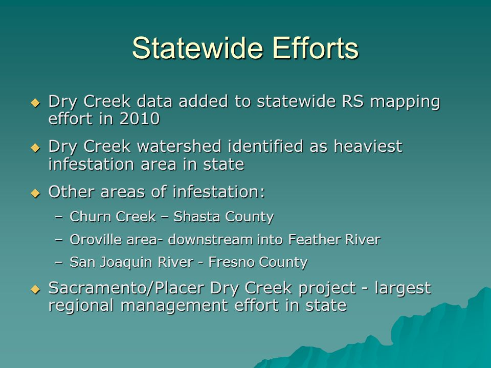 Statewide Efforts Dry Creek data added to statewide RS mapping effort in 2010. Dry Creek watershed identified as heaviest infestation area in state.