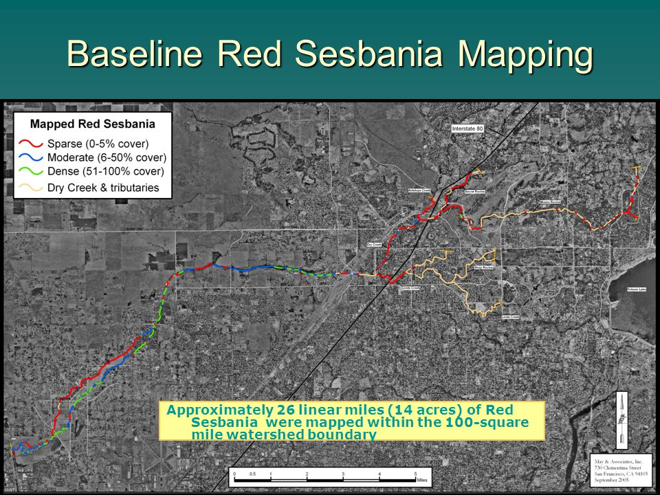 Baseline Red Sesbania Mapping