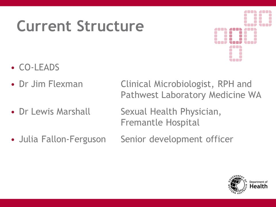 Current Structure CO-LEADS