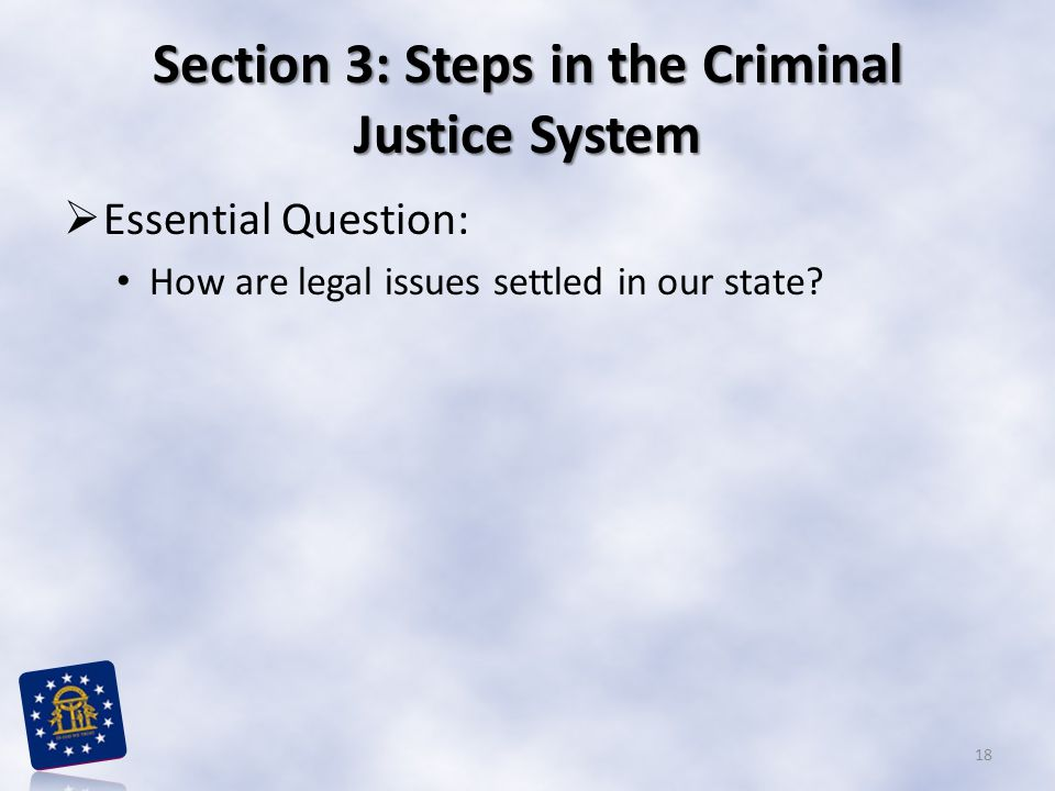 Section 3: Steps in the Criminal Justice System