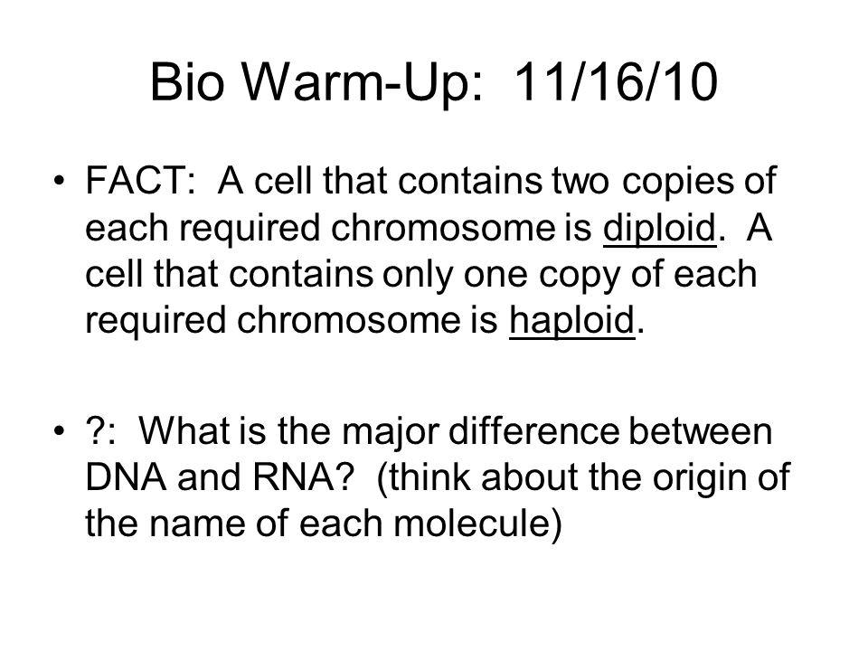 Bio Warm-Up: 11/16/10