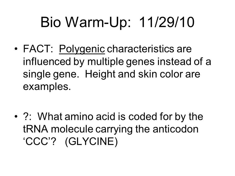 Bio Warm-Up: 11/29/10