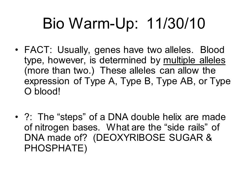 Bio Warm-Up: 11/30/10