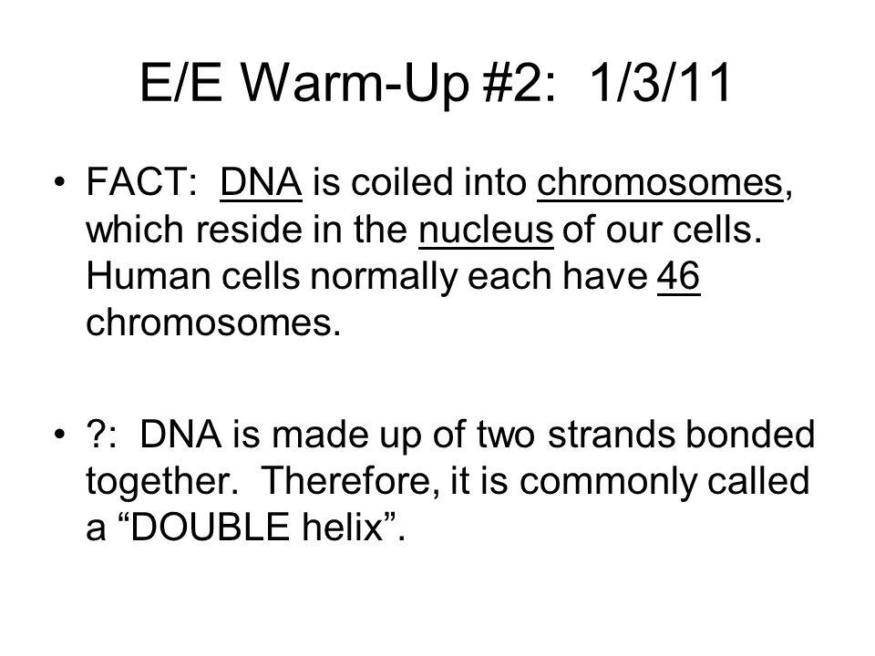 E/E Warm-Up #2: 1/3/11
