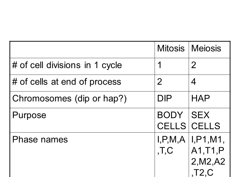 Mitosis Meiosis. # of cell divisions in 1 cycle. 1. 2. # of cells at end of process. 4. Chromosomes (dip or hap )