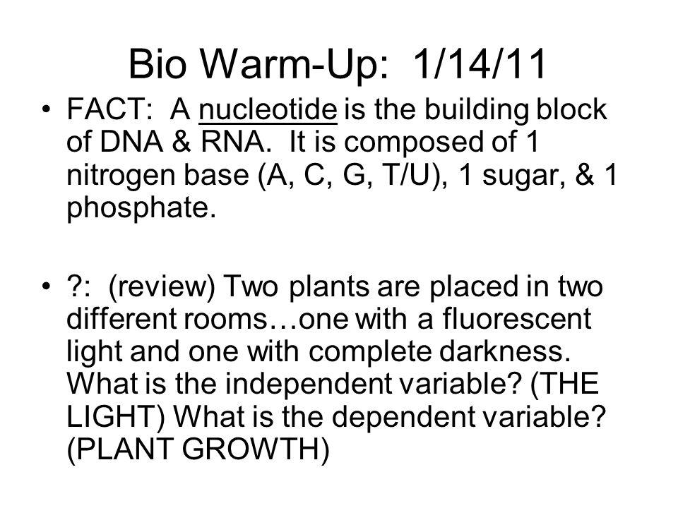 Bio Warm-Up: 1/14/11