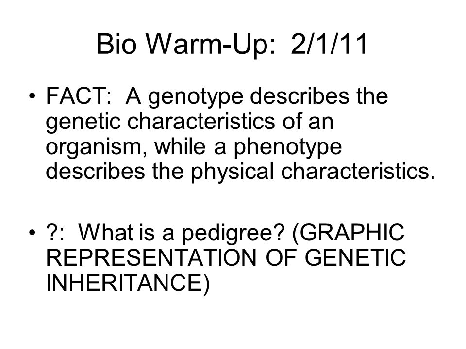 Bio Warm-Up: 2/1/11