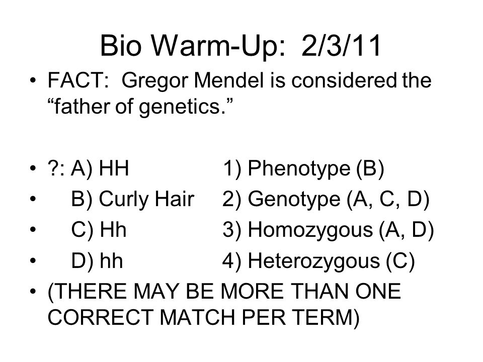 Bio Warm-Up: 2/3/11 FACT: Gregor Mendel is considered the father of genetics. : A) HH 1) Phenotype (B)