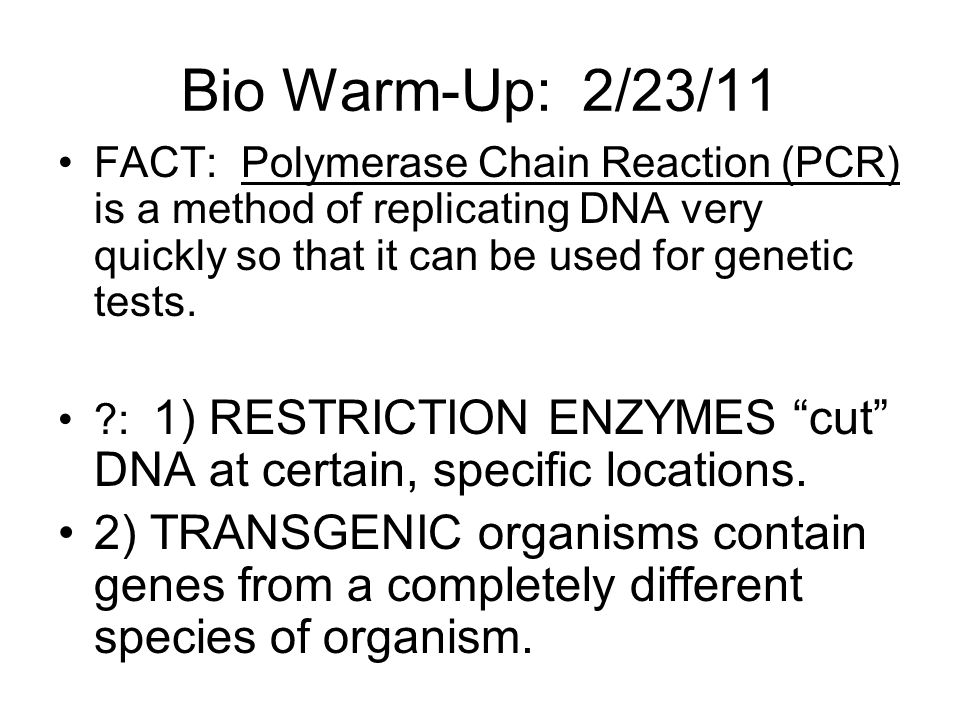Bio Warm-Up: 2/23/11 FACT: Polymerase Chain Reaction (PCR) is a method of replicating DNA very quickly so that it can be used for genetic tests.