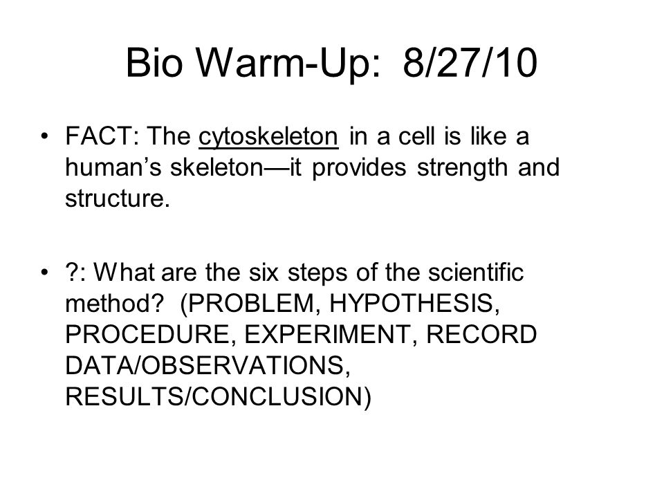 Bio Warm-Up: 8/27/10 FACT: The cytoskeleton in a cell is like a human's skeleton—it provides strength and structure.
