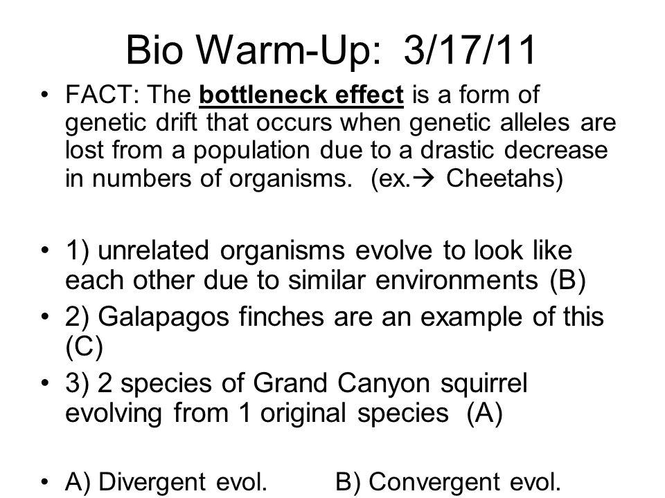 Bio Warm-Up: 3/17/11