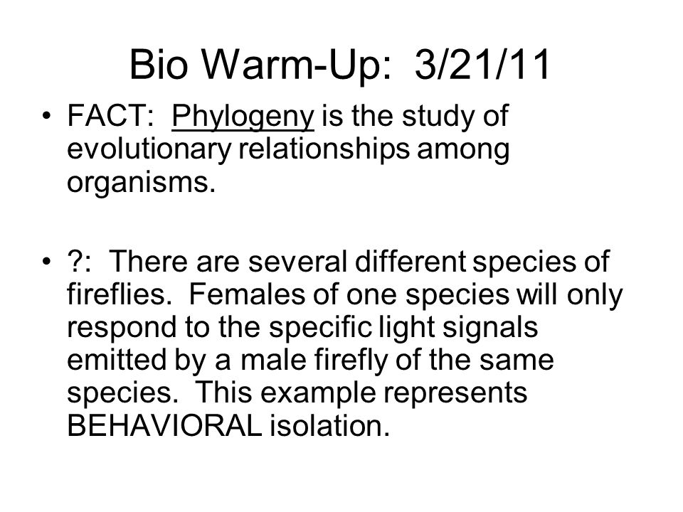 Bio Warm-Up: 3/21/11 FACT: Phylogeny is the study of evolutionary relationships among organisms.