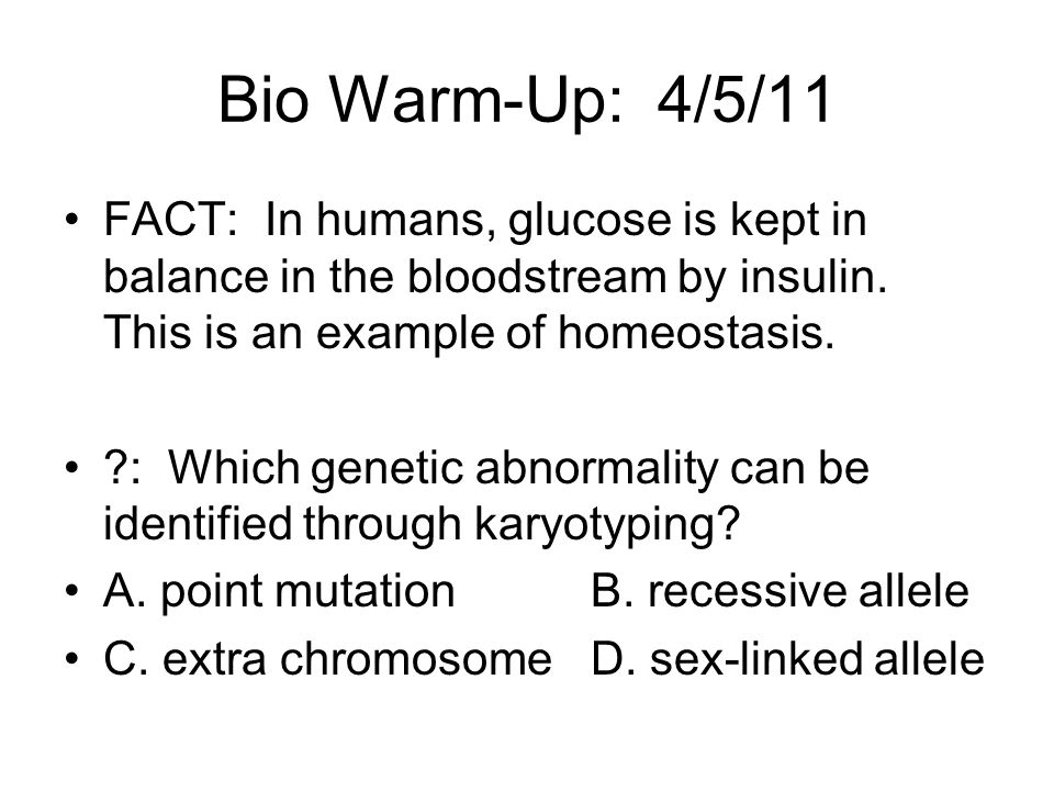 Bio Warm-Up: 4/5/11 FACT: In humans, glucose is kept in balance in the bloodstream by insulin. This is an example of homeostasis.