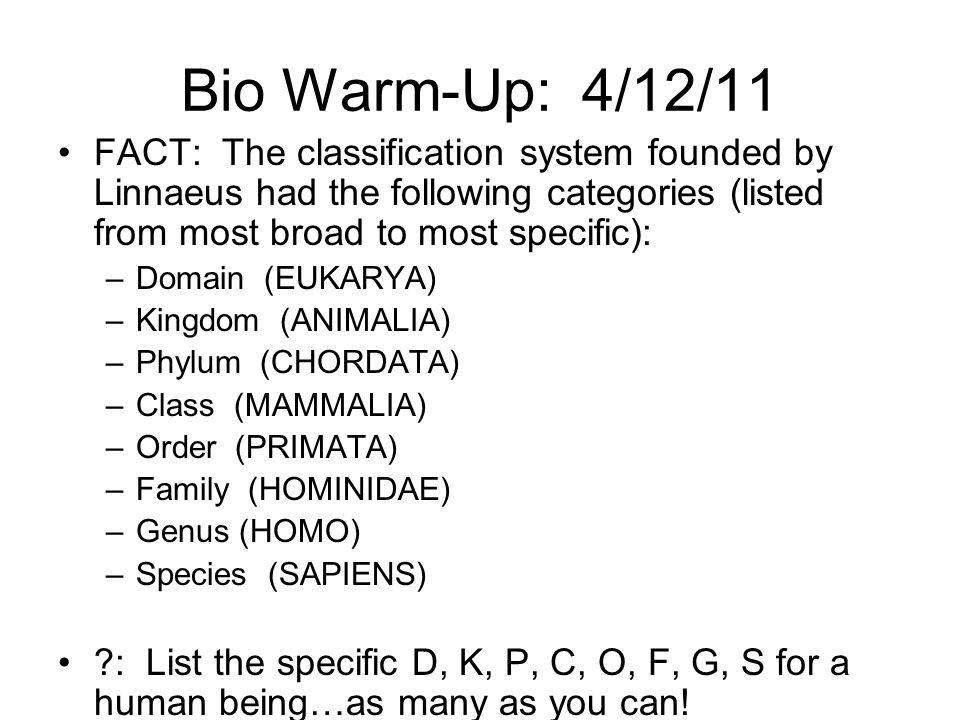 Bio Warm-Up: 4/12/11 FACT: The classification system founded by Linnaeus had the following categories (listed from most broad to most specific):