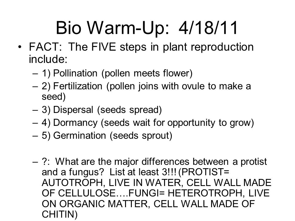 Bio Warm-Up: 4/18/11 FACT: The FIVE steps in plant reproduction include: 1) Pollination (pollen meets flower)