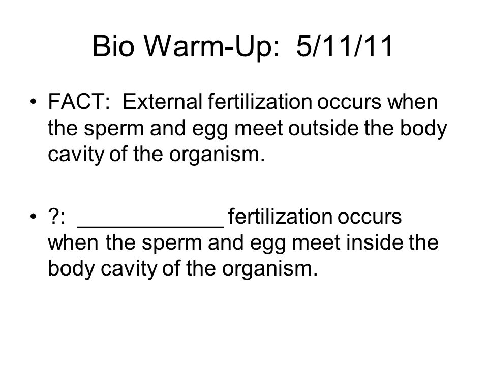 Bio Warm-Up: 5/11/11 FACT: External fertilization occurs when the sperm and egg meet outside the body cavity of the organism.