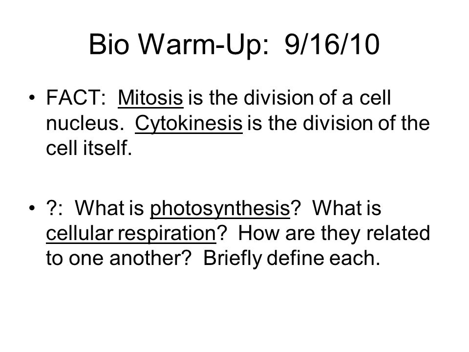 Bio Warm-Up: 9/16/10 FACT: Mitosis is the division of a cell nucleus. Cytokinesis is the division of the cell itself.