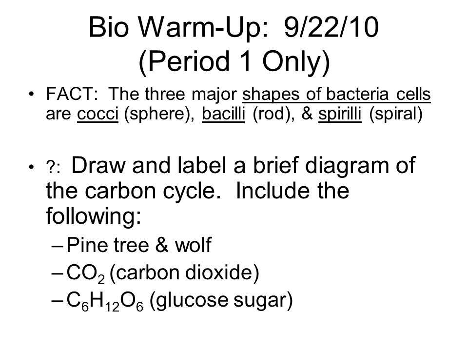Bio Warm-Up: 9/22/10 (Period 1 Only)