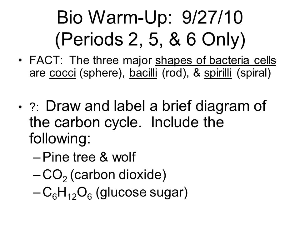 Bio Warm-Up: 9/27/10 (Periods 2, 5, & 6 Only)