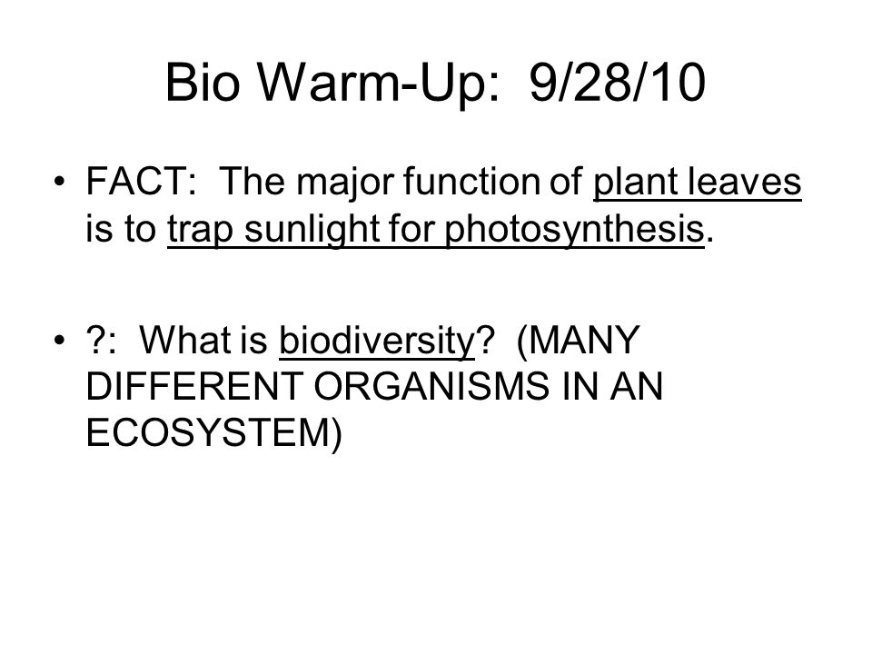 Bio Warm-Up: 9/28/10 FACT: The major function of plant leaves is to trap sunlight for photosynthesis.