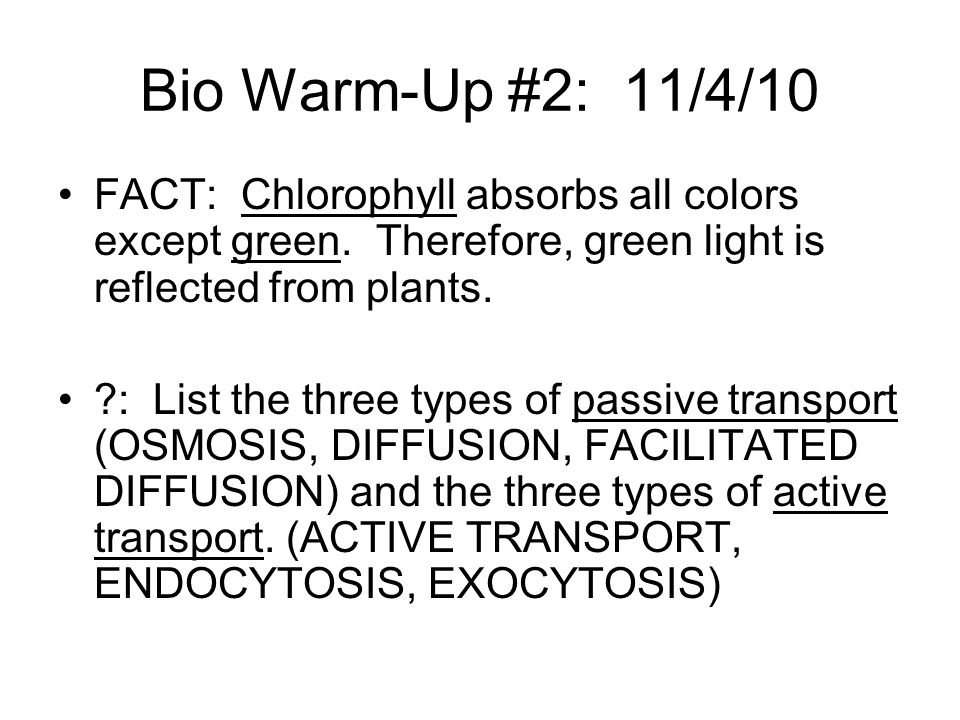 Bio Warm-Up #2: 11/4/10 FACT: Chlorophyll absorbs all colors except green. Therefore, green light is reflected from plants.