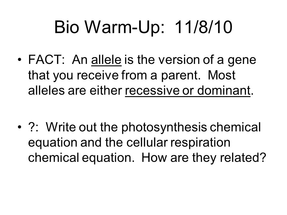 Bio Warm-Up: 11/8/10 FACT: An allele is the version of a gene that you receive from a parent. Most alleles are either recessive or dominant.