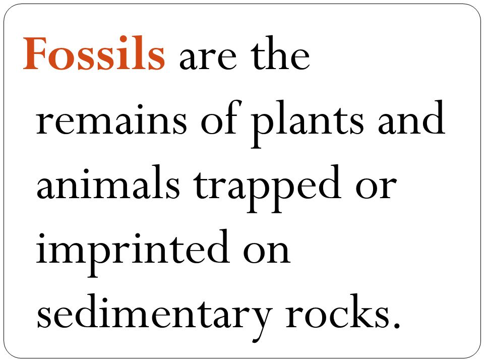 Fossils are the remains of plants and animals trapped or imprinted on sedimentary rocks.