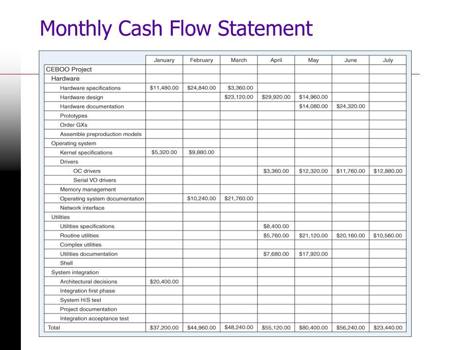 Monthly Cash Flow Statement