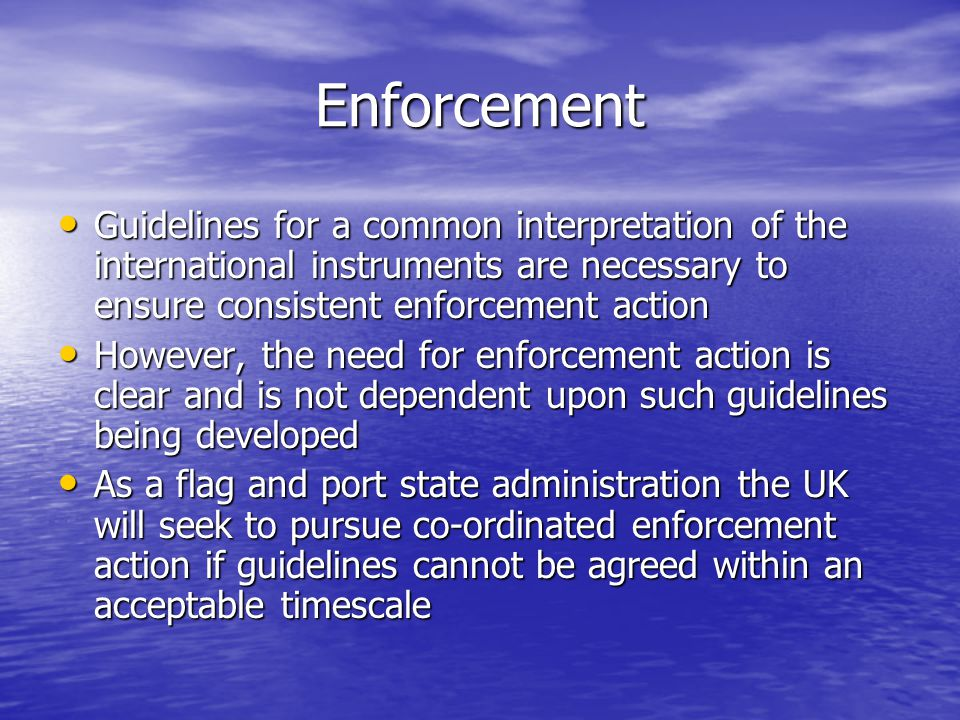 Enforcement Guidelines for a common interpretation of the international instruments are necessary to ensure consistent enforcement action.