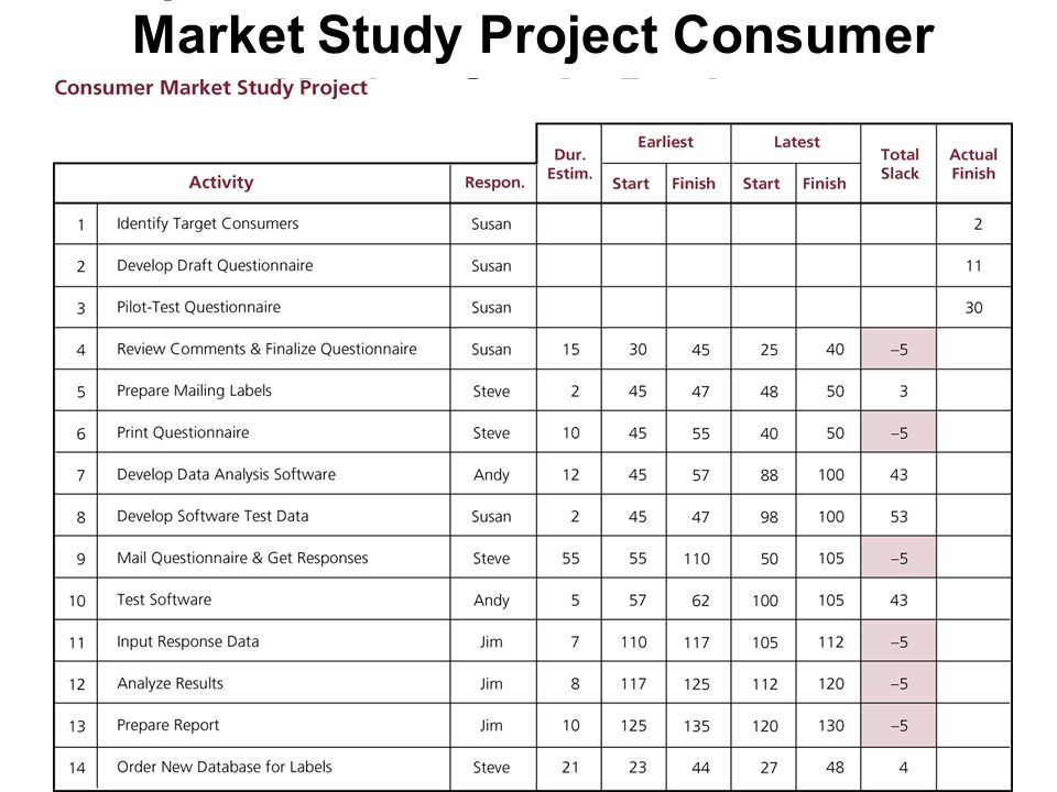 Updated Schedule for Consumer Market Study Project Consumer Market Study Project