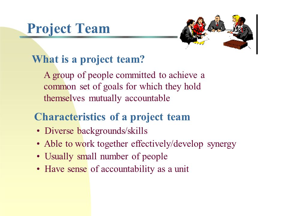 Project Team What is a project team Characteristics of a project team