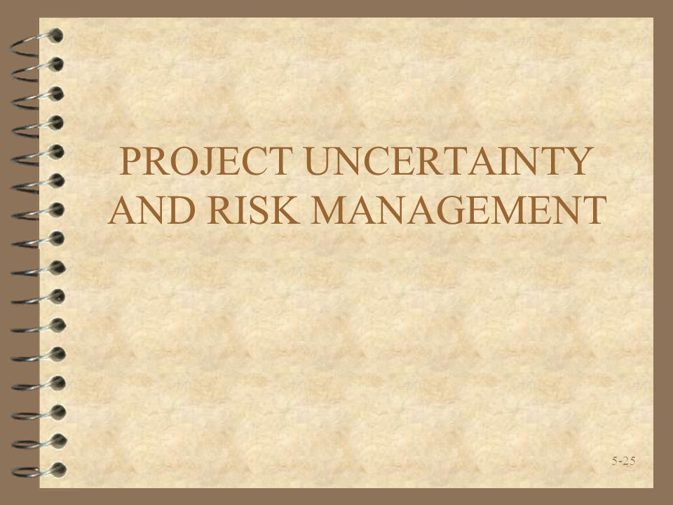 PROJECT UNCERTAINTY AND RISK MANAGEMENT