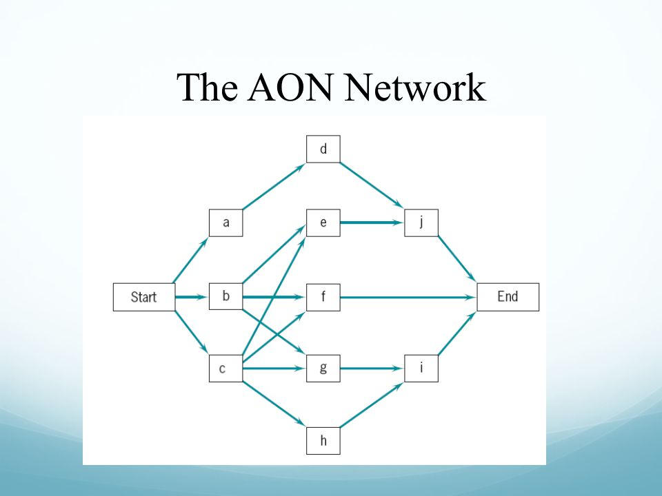 The AON Network