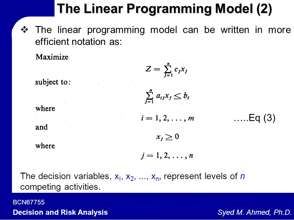 The Linear Programming Model (2)