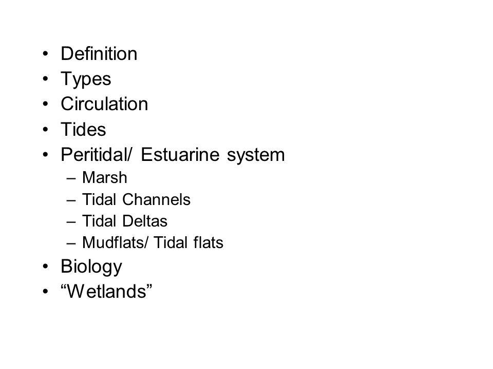 Peritidal/ Estuarine system