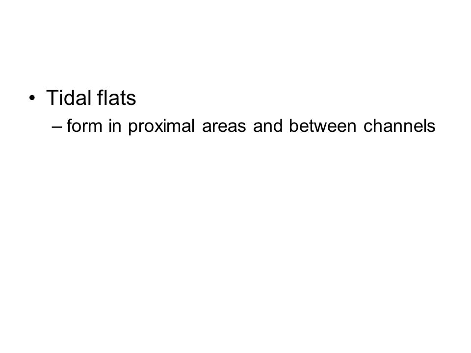 Tidal flats form in proximal areas and between channels