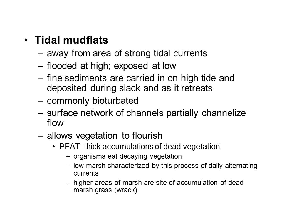 Tidal mudflats away from area of strong tidal currents