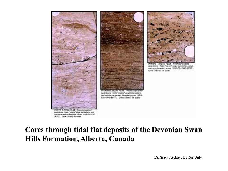 Cores through tidal flat deposits of the Devonian Swan Hills Formation, Alberta, Canada