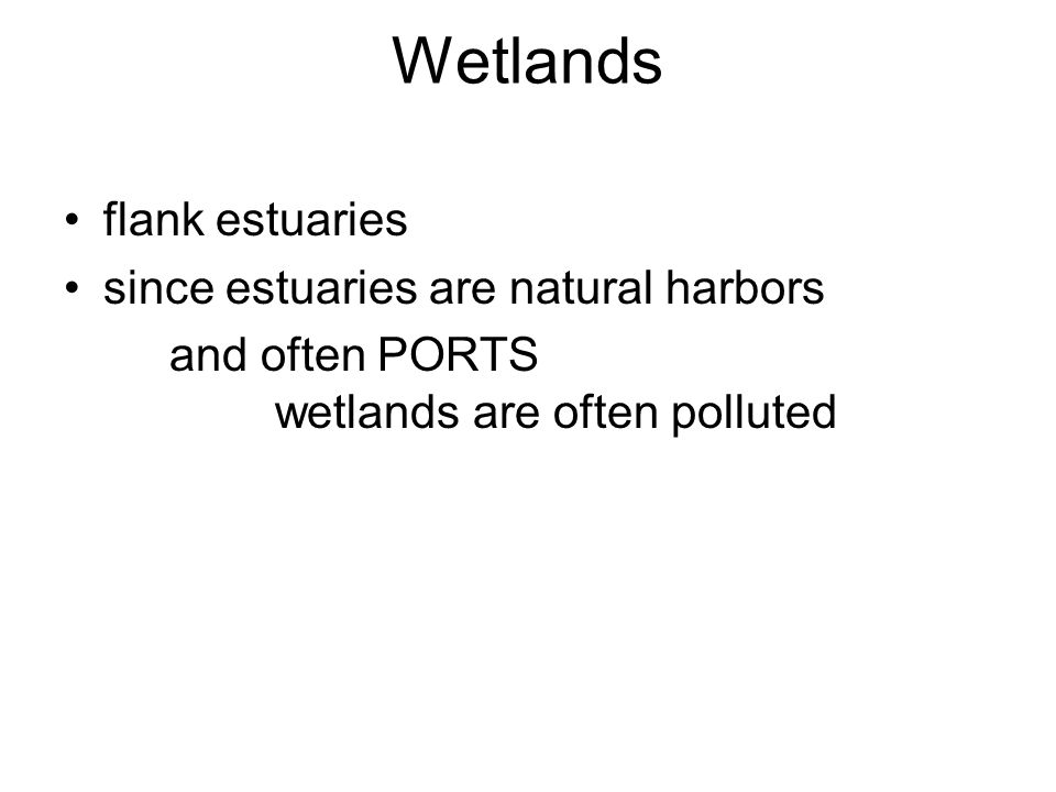 Wetlands flank estuaries since estuaries are natural harbors