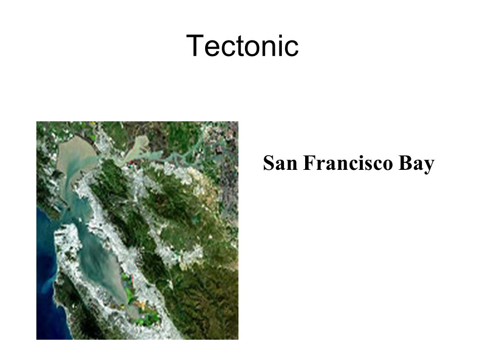 Tectonic San Francisco Bay