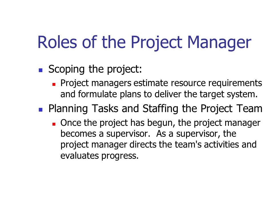 Roles of the Project Manager