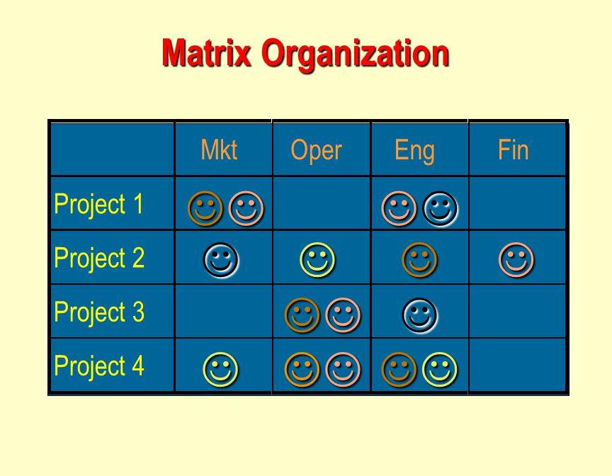  Matrix Organization Mkt Oper Eng Fin Project 1 Project 2 Project 3