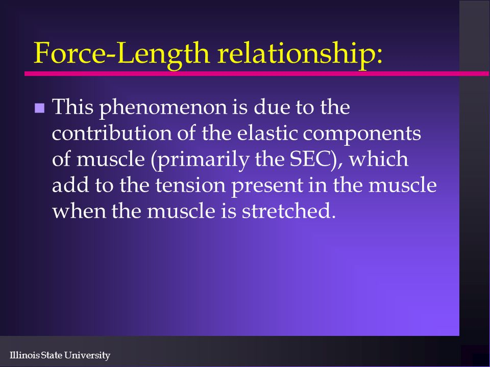 key components of the force tension relationship