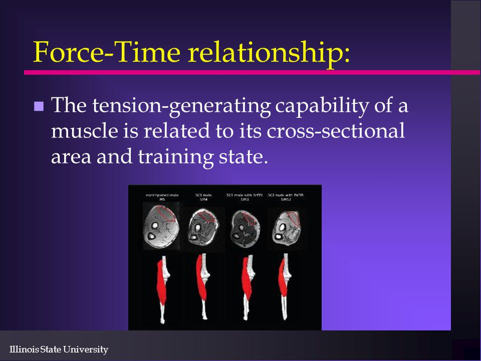 Force-Time relationship: