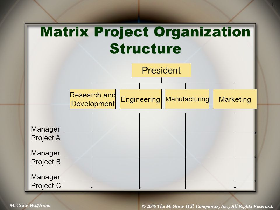 Matrix Project Organization Structure