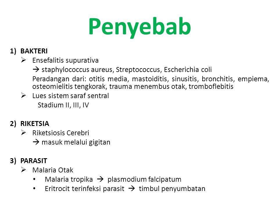 Penyebab BAKTERI Ensefalitis supurativa