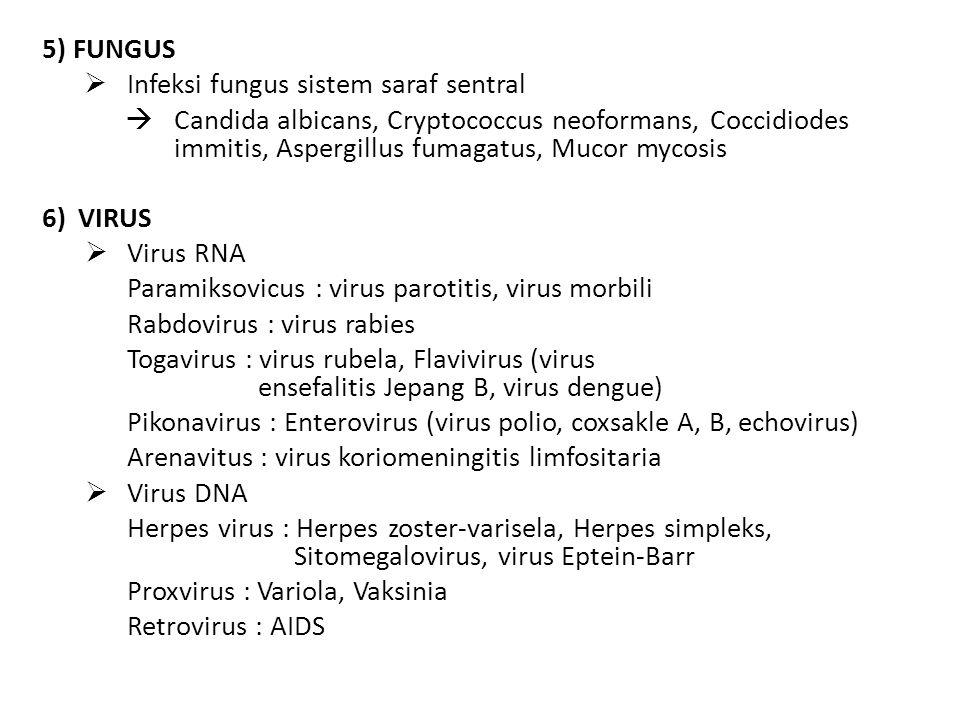 5) FUNGUS Infeksi fungus sistem saraf sentral. Candida albicans, Cryptococcus neoformans, Coccidiodes immitis, Aspergillus fumagatus, Mucor mycosis.