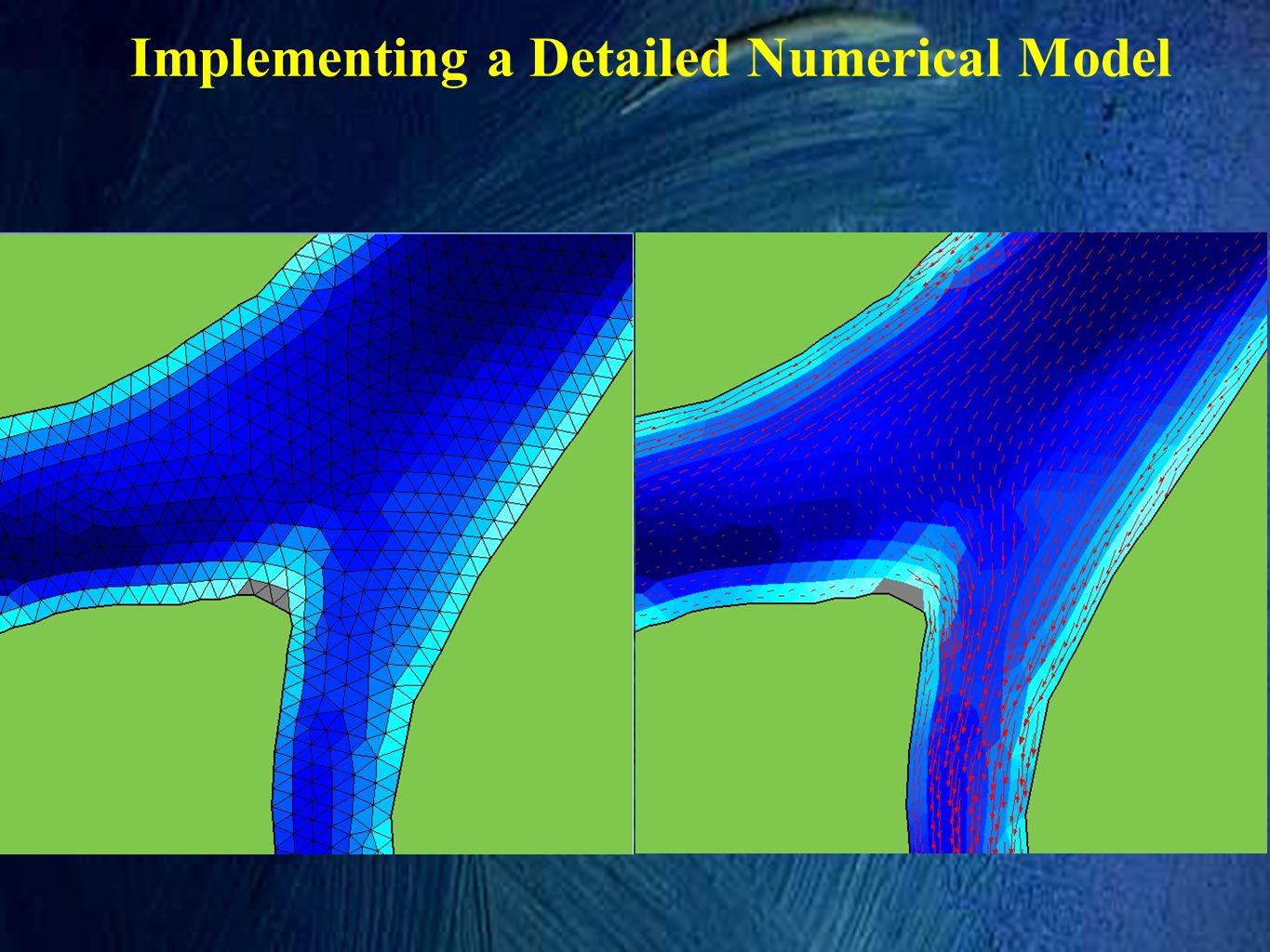 Implementing a Detailed Numerical Model
